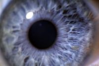Supernova Eye 1