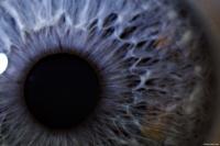 Supernova Eye 2